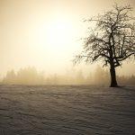 Il mio sole, d'inverno
